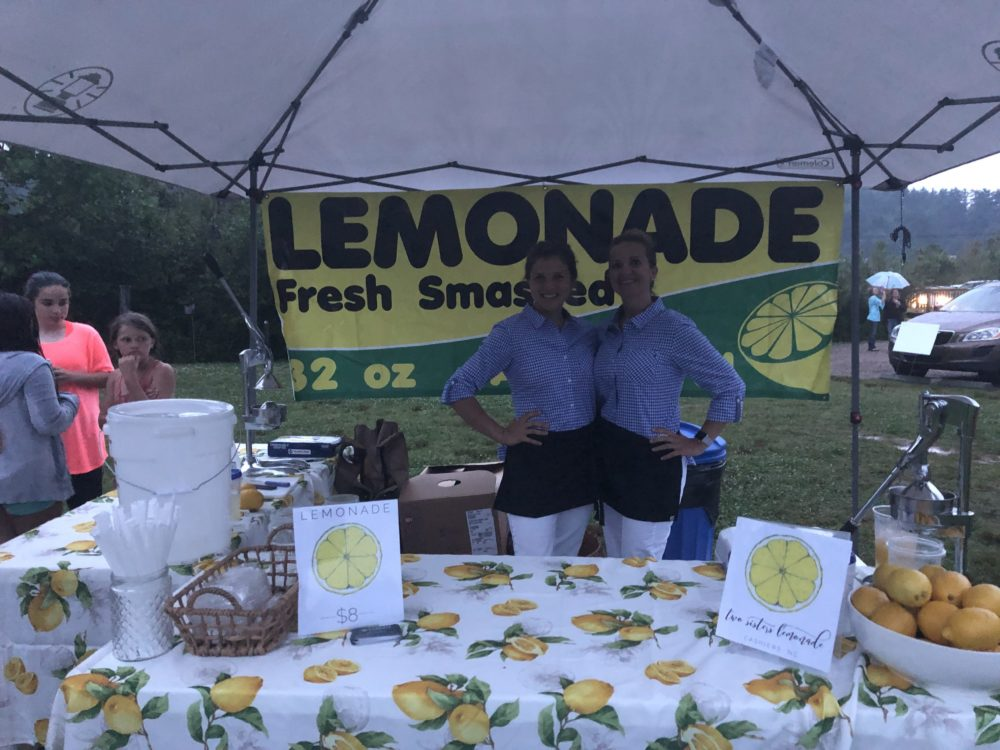How To Start A Lemonade Business